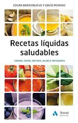 E-book Recetas liquidas saludables