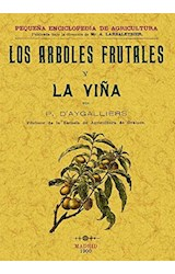 Papel Los Árboles Frutales Y La Viña