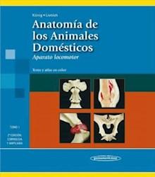Papel Anatomia De Los Animales Domesticos