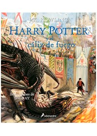 Papel Harry Potter Y El Caliz De Fuego 4 - Ed Ilus