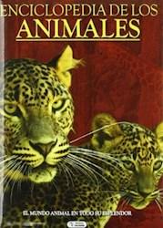 Papel Enciclopedia De Los Animales