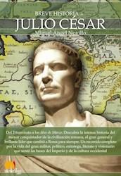 Libro Breve Historia De Julio Cesar