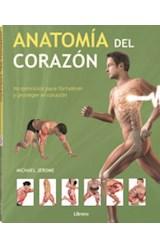 Papel ANATOMIA DEL CORAZON