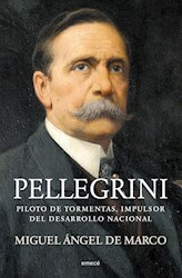 Libro Pellegrini