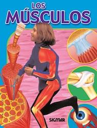 Libro Los Musculos