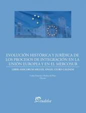 Libro Evolucion Historica Y Juridica De Los Procesos De Integracion En La Union