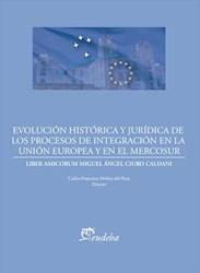 E-book Evolución histórica y jurídica de los procesos de integración de la Unión Europea y el Mercosur