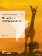Papel Camélidos sudamericanos