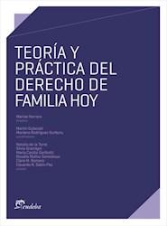 E-book Teoría y práctica del derecho de familia hoy