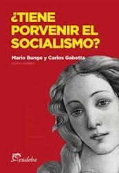 E-book ¿Tiene porvenir el socialismo?
