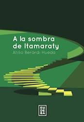 Libro A La Sombra De Itamaraty