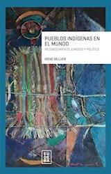 Libro Pueblos Indigenas En El Mundo