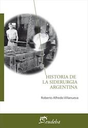 E-book Historia de la siderurgia argentina