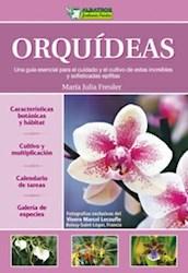 Papel Orquideas Una Guia Esencial