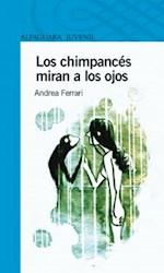 Papel Chimpances Miran A Los Ojos, Los