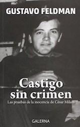 Libro Castigo Sin Crimen Las Pruebas De La Inocencia De Cesar Milani