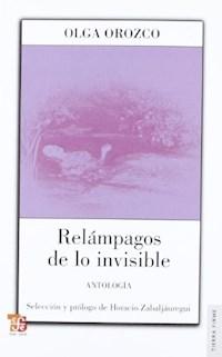 Libro Relampagos De Lo Invisible