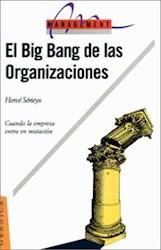 Papel Big Bang De Las Organizaciones, El