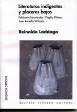 Libro Literaturas Indigentes Y Placeres Bajos