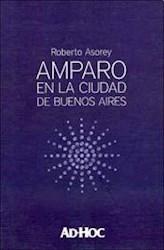 Libro Amparo En La Ciudad De Buenos Aires