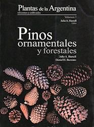 Papel Pinos Ornamentales Y Forestales