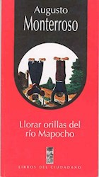 Papel Lorar Orillas Del Rio Mapocho