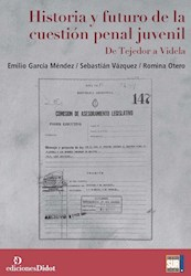 Papel Historia Y Futuro De La Cuestión Penal Juvenil