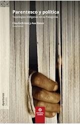 E-book Parentesco y política