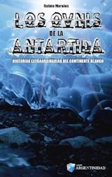 Papel Ovnis De La Antartida, Los
