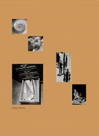 Libro Mundo Propio . Fotografia Moderna Argentina 1927-1962