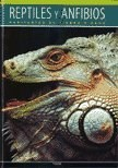 Papel Reptiles Y Anfibios