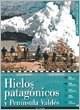 Papel Hielos Patagonicos Y Peninsula Valdes - Guias Turisticas Visor