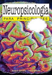 Papel Neuropsicologia Para Principiantes