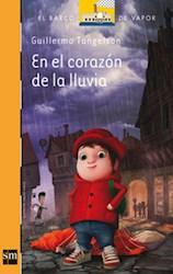 Libro En El Corazon De La Lluvia