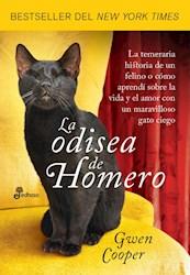 Papel Odisea De Homero, La