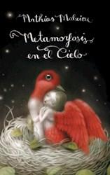 Papel Metamorfosis En El Cielo