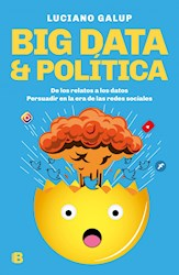 Papel Big Data & Politica