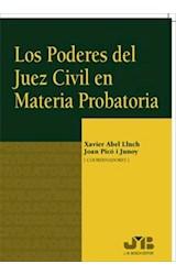 E-book Los poderes del juez civil en materia probatoria