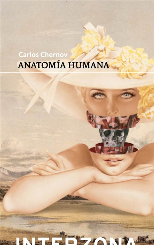 Papel Anatomia Humana