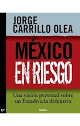 E-book México en riesgo