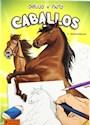 Libro Caballos  Dibujo Y Pinto