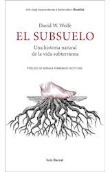 E-book El subsuelo