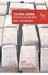 E-book Cocaína andina