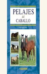 Papel PELAJES DEL CABALLO