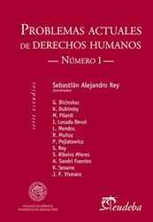 E-book Problemas actuales de derechos humanos. Número I