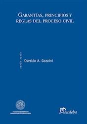 E-book Garantías, principios y reglas del proceso civil