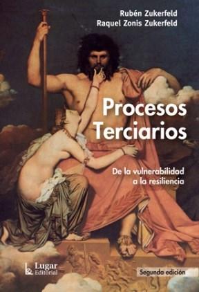 PROCESOS TERCIARIOS DE LA VULNERABILIDAD A LA RE