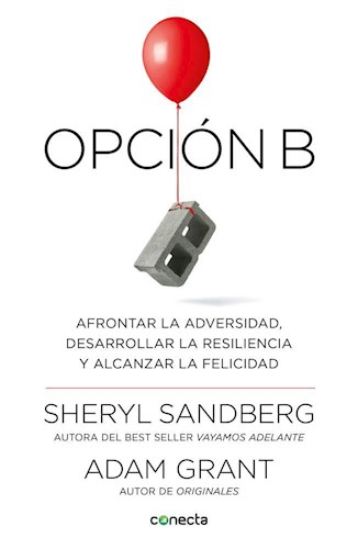 OPCION B