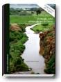 Ecología para el rescate de la Tierra. Capítulo gratis